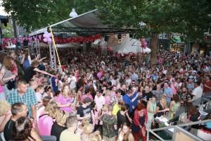 roze-woensdag-2014-©-stef-verstraaten-112-_TEF8538